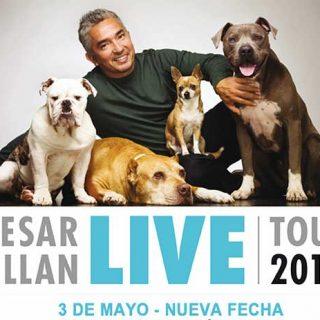 César Millán en Madrid, 2 y 3 de mayo próximos.