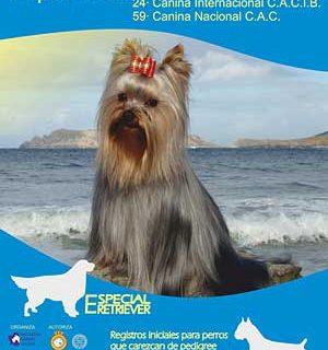 24 Exposición Canina Internacional de Vigo.