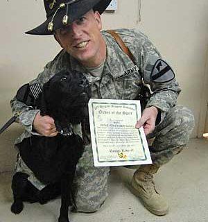 Un perro militar, galardonado con la Orden de la Espuela.