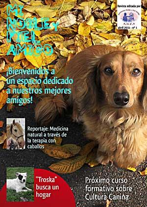 Nueva revista Asociación Noble y Fiel Amigo.