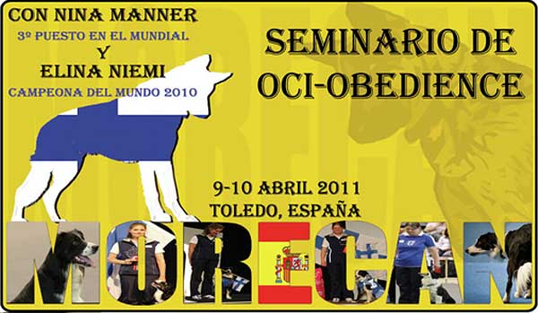 Seminario de OCI-Obedience, en Toledo.