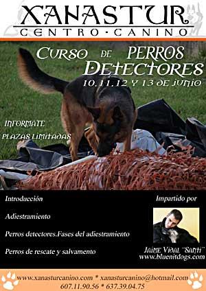 """Curso práctico para Perros Detectores con Jaime Vidal """"Santi""""."""