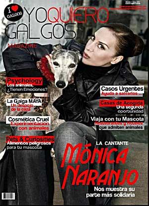 Yo Quiero Galgos, nueva revista.