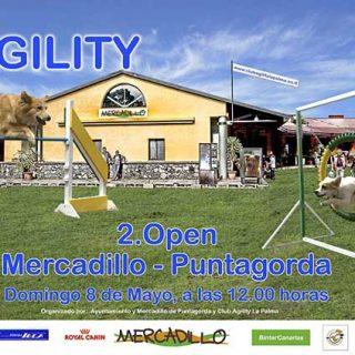 Segundo Open de Agility del Mercadillo de Puntagorda.