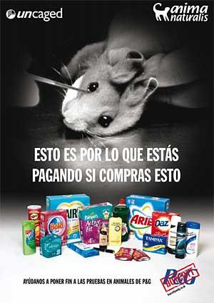 24 de abril, Día del Animal de Laboratorio.