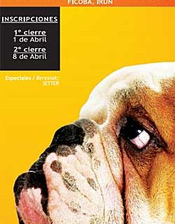 32 Exposición Canina Internacional de Guipúzcoa.