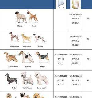 Solución a las cataratas en los perros