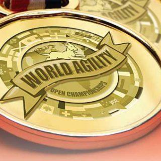 World Agility Open Championships 2011.