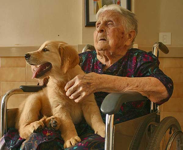 La terapia asistida por animales reduce la ansiedad del paciente en sometido a Resonancia Magnética.