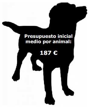 Resultados del XXIII Estudio Fundación Affinity sobre el Abandono de Animales de Compañía.