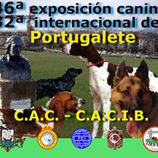 Exposición Canina Internacional de Portugalete, horarios, cómo llegar, premios especiales...