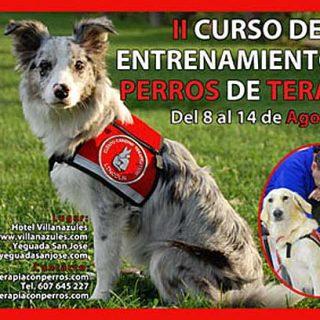II Curso Adiestramiento de Perros de Terapia.