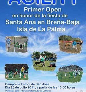 Agility en las fiestas de Santa Ana, Breña Baja, La Palma.