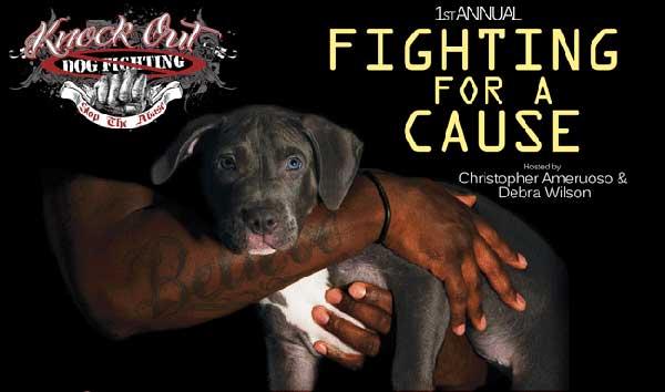 K.O. a las peleas de perros.