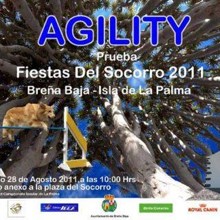 El próximo 28 de agosto, domingo, a partir de las 10 de la mañana, se celebrará una prueba de agility en honor de de las Fiestas del Socorro -Breña Baja- Isla de La Palma.