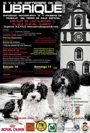 Los próximos días 10 y 11 de septiembre el perro de agua español tiene una cita en Ubrique.