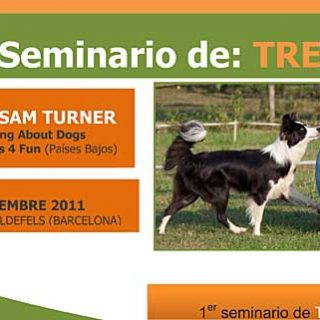 Seminario de Treibball con Sam Turner (organiza Educanimals).