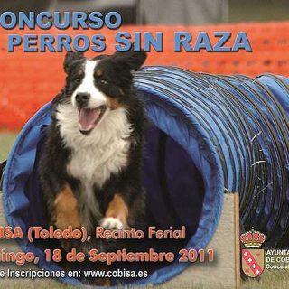 Concurso de perros sin raza, exhibición de obediencia y agility (Morecan), rifa benéfica... En Cobisa (Toledo).