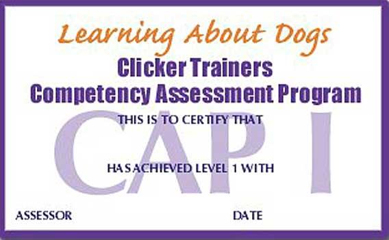Curso de clicker en Fuenlabrada: 1,2,15,29,30 de octubre, organiza la Asociación Canina Fuenlabrada. Listado de próximas actividades CAP1, CAP2, CAP3, lifeskills, microshapiing...
