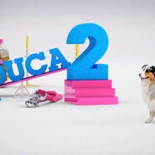 Más que perros y gatos, nuevo programa en TVE 2.