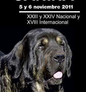XVIII Exposición Canina Internacional de Murcia.