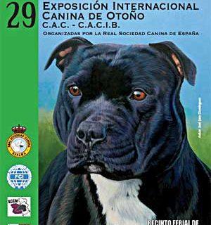 27 Exposición Canina Internacional de Talavera.
