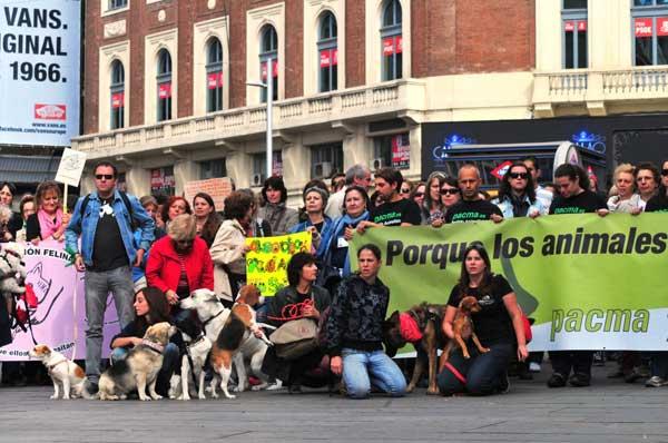 Animalistas contra la nueva Ley de Protección Animal de Madrid .