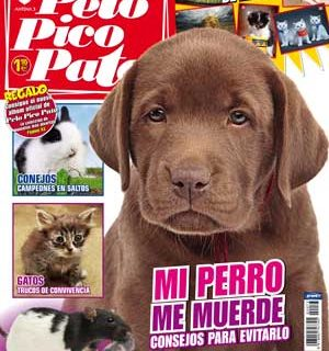 Revista Pelo Pico Pata, noviembre de 2011.