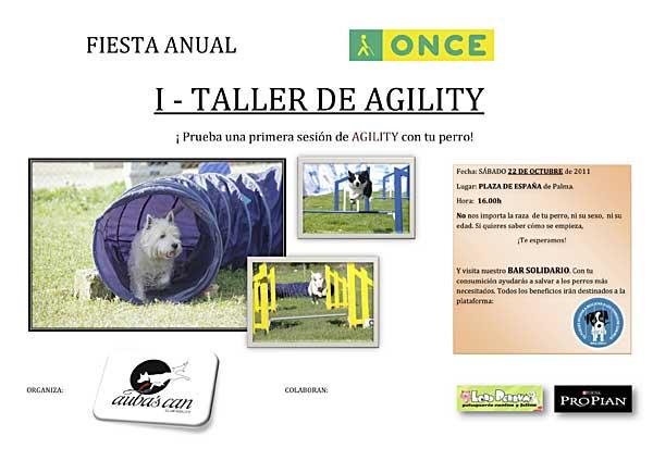 Taller de agility en Mallorca.