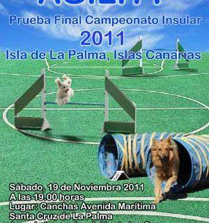 Agility en La Palma, última prueba del Campeonato 2011.