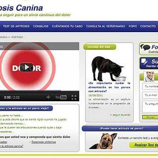 www.tratamientoartrosisperro.com, una web de información práctica centrada en las causas, prevención y tratamiento de los perros que sufren artrosis canina.