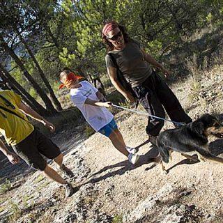 Terapia asistida con perros abandonados. La intervención Psico educativa facilitada por perros reduce los niveles de ansiedad y mejora la autoestima en menores en situación de vulnerabilidad.