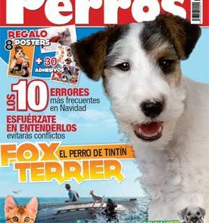 Revista Perros y Compañía, diciembre 2011.