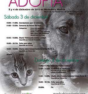 Madrid Río Adopta 2011, 3 y 4 de diciembre.
