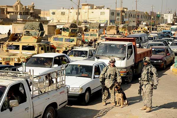 Los perros militares más afectados por el síndrome de estrés postraumático son los destinados a la detección de minas y explosivos.
