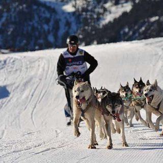 Cuenta atrás para la edición 2012 de Pirena Advance, con la participación de 50 equipos.