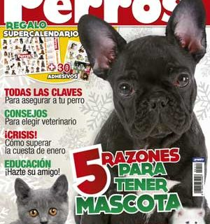 Revista Perros y Compañía, enero de 2012.