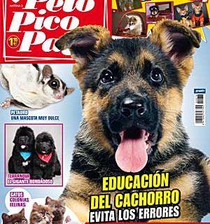 """Pelo Pico Pata: raza principal el Terranova, en educación """"Evitar errores en la educación del cachorro"""" (por Virginia Galego), belleza con la Eukanuba World Challenge, cómo encontrar el perro ideal, perros detectores."""