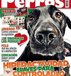 Perros y Compañía del mes de febrero: Manchester terrier, obesidad, educación, adopciones...