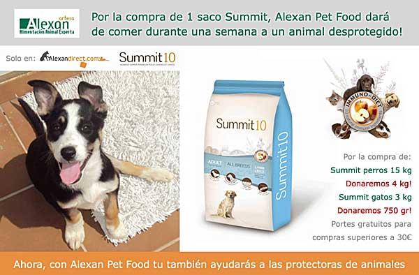 Alimenta gratis un animal de una protectora una semana, promoción de Alexan Artesa.