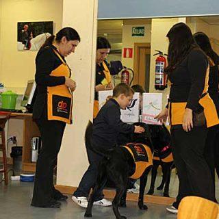 """""""Enseñar a leer a Conguito"""", programa de terapia asistida con perros de Dogtor Animal."""