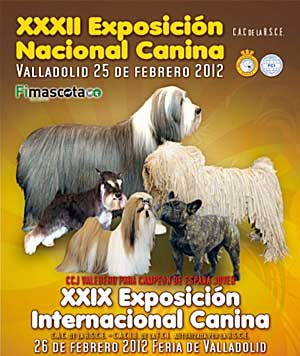 Exposición Canina de Valladolid.