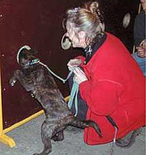 Monique de Roeck lleva años preparando perros de búsqueda y rescate para la policía y ejército de varios países europeos y el estado de Nueva York, y ahora podemos aprender sus métodos en España. El seminario está limitado a dos grupos de trabajo de seis perros cada uno. Con Educación Morecan.