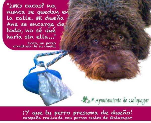 """Iniciativa del Ayuntamiento de Galapagar para concienciar de la recogida heces. En lugar de recurrir a los métodos sancionadores tan habituales, han creado """"¡Y que tu perro presuma de dueño""""!"""
