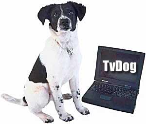 DogTV es un canal de televisión... ¡para perrros! Se divide en tres programaciones diferentes (Relajación, Estimulación y Exposición).