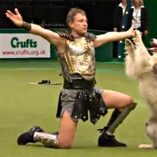Crufts no sólo es controvertidas exposiciones de belleza, también hay agility con perros rescatados y una de las competiciones de HTM más espectaculares del mundo.