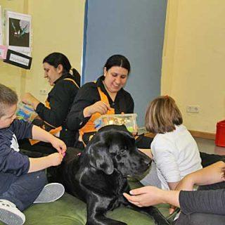 Curso de Adiestramiento de Perros de Terapia con Dogtor Animal, los próximos 14, 15, 21 y 22 de abril y 5, 6, 19 y 20 de mayo