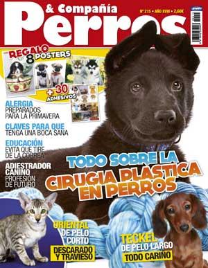 Revista Perros y Compañía de abril: teckel de pelo largo, cuidados de la boca del perro, alergias primaverales...