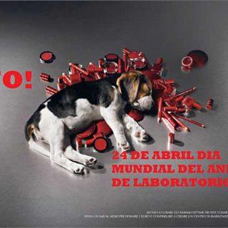 Día Mundial del Animal de Laboratorio 2012.