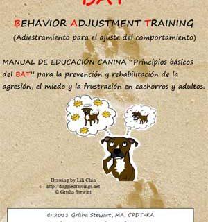BAT Basics, ya disponible en castellano.
